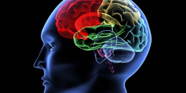 Neurofeedback – Holistic Healing